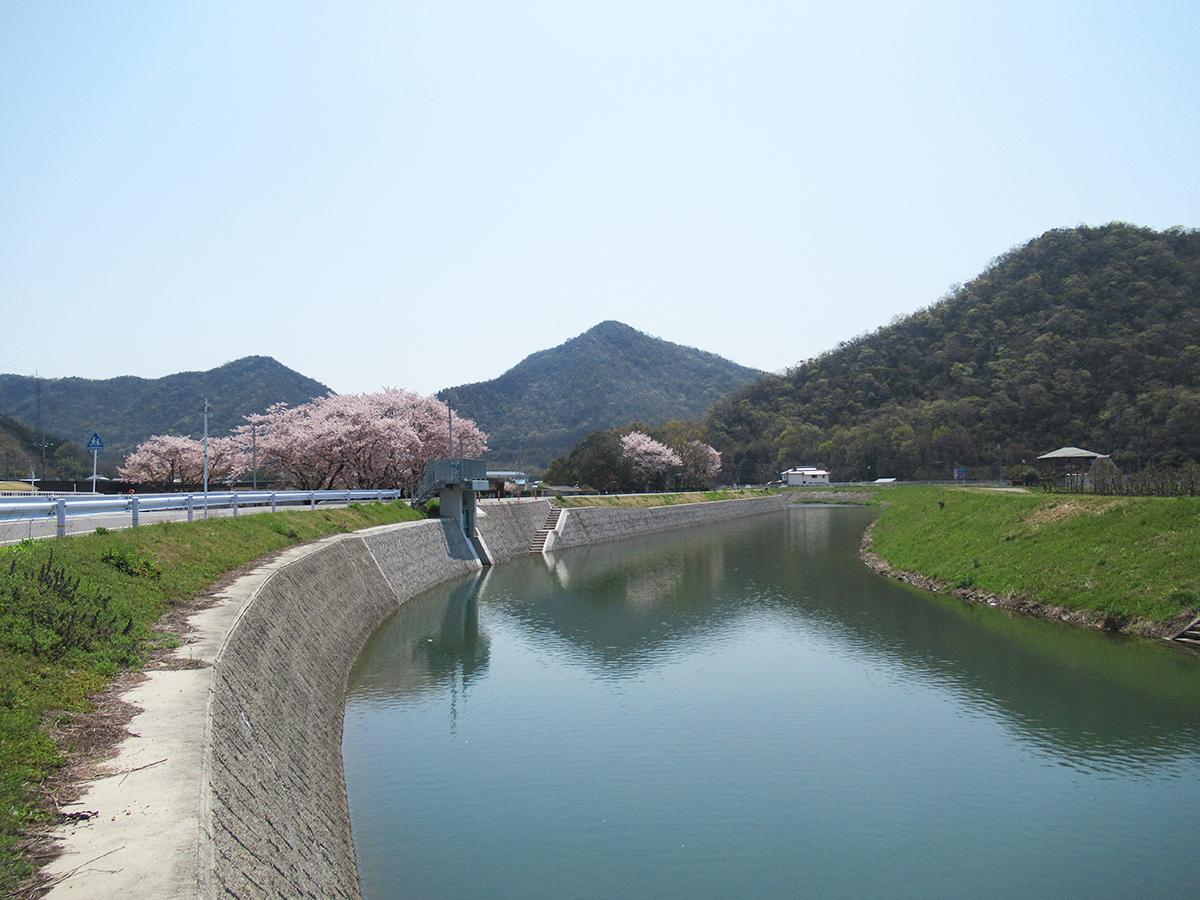 天王山のふもとを流れる初瀬川