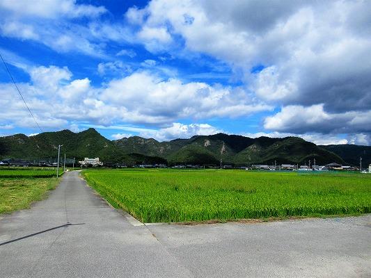 和気町日室の農地
