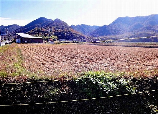 赤磐市奥吉原の農地